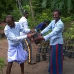 290 nye frugttræer skal glæde børnene i byen Manikkamadu