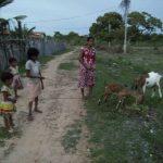 Vaalvatharam - Hjælp til 10 familier i Mullaitheevu